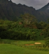 Hitting the 10th green in regulation is difficult at Ko'olau Golf Club on Oahu.
