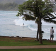 Guests at Turtle Bay Resort can sit on bleachers to watch the surfers do their thing, riding the massive waves of the North Shore.