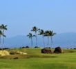 At 293 yards from the blue tees, big hitters can attempt to drive the fifth green of the Kings' golf course at Waikoloa Beach Resort.