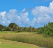 Tall weeds hide the green on the par-3 eighth hole of the Palmer golf course at Turtle Bay Resort on Oahu.