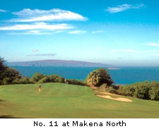 No. 11 at Makena North
