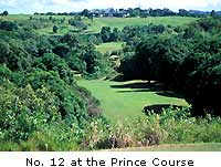 No. 12 at the Prince Course