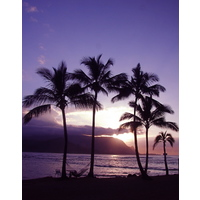 Princeville Resort's secluded beach often yields beautiful Pacific Ocean sunsets.
