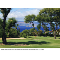 The 16th hole on the Old Blue course at Wailea Golf Club is a dogleg right par 5.