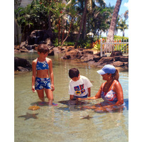 Children can feed the stingrays and baby hammerhead sharks swimming in the saltwater ponds of JW Marriott Ihilani Ko Olina Resort & Spa.